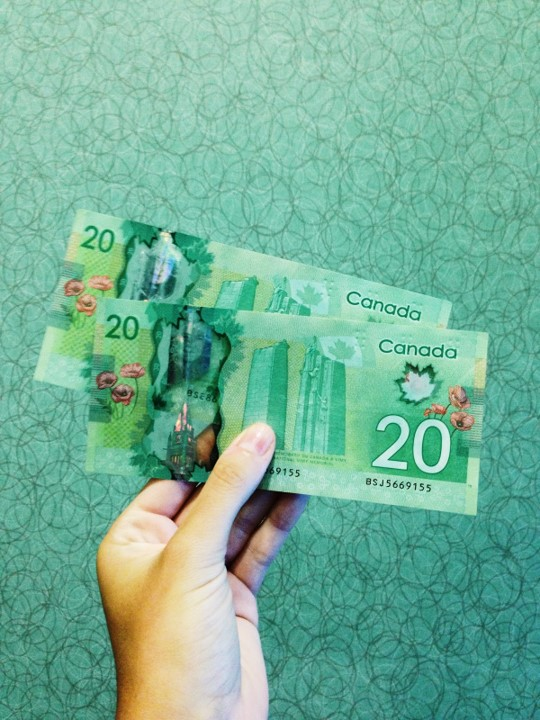 Somebody holding two twenty-dollar Canadian bills.